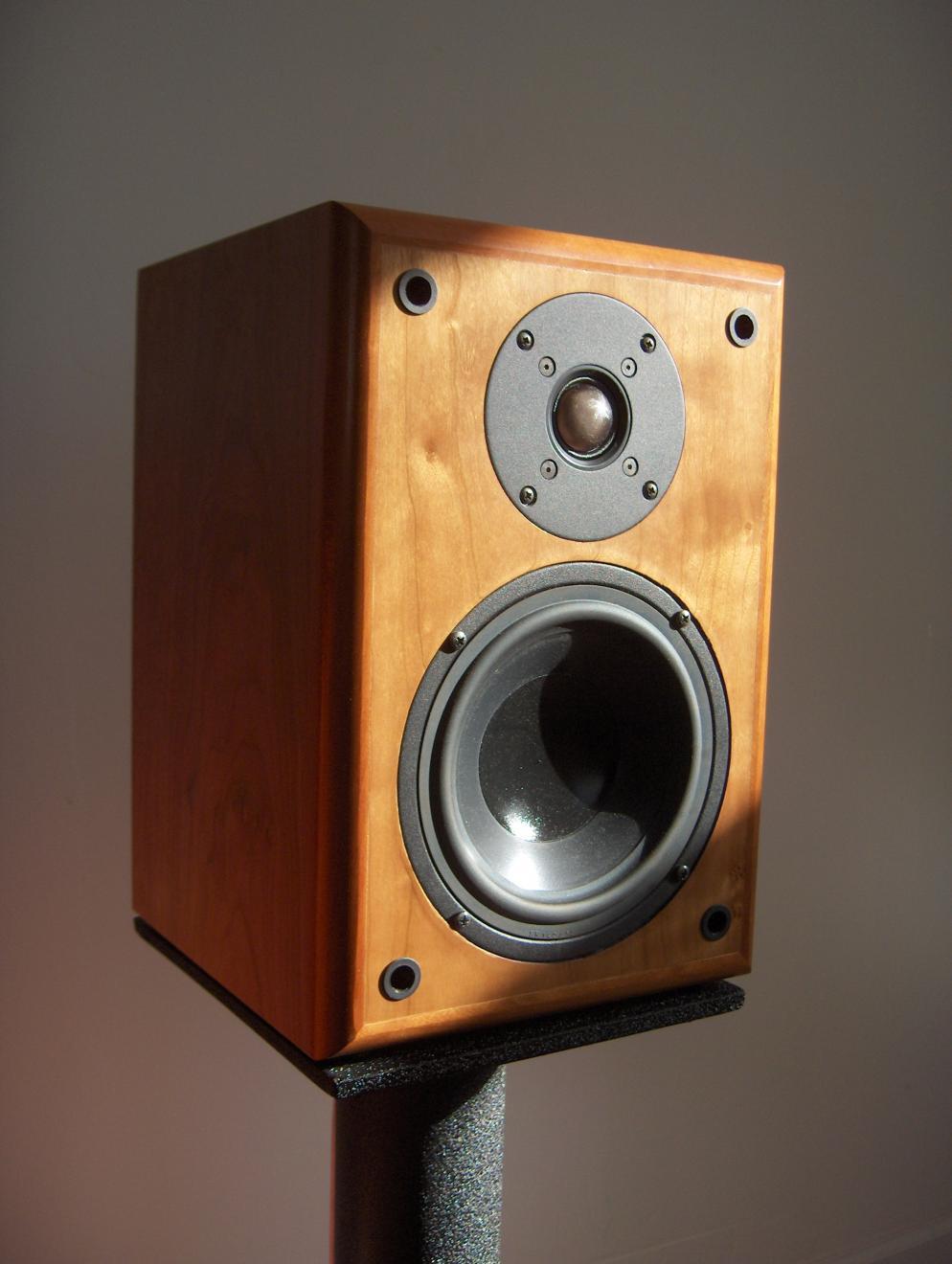 My First Speaker Build - Jeff's Continuum 2-Way - Techtalk ...