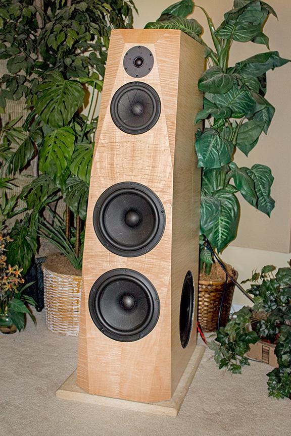 Hypex dsp or Najda dsp? - Techtalk Speaker Building, Audio